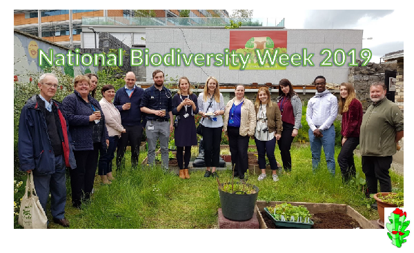Biodiversity Week Report 2019