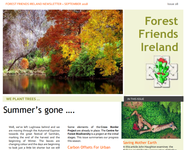FFI Newsletter 28 Cover