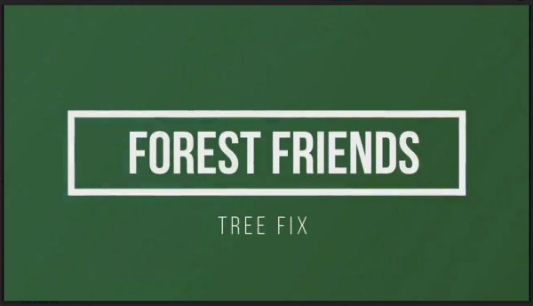 FFI Forest Fix