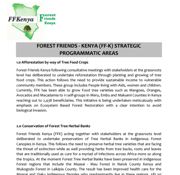 Forest Friends Kenya Strategy Doc