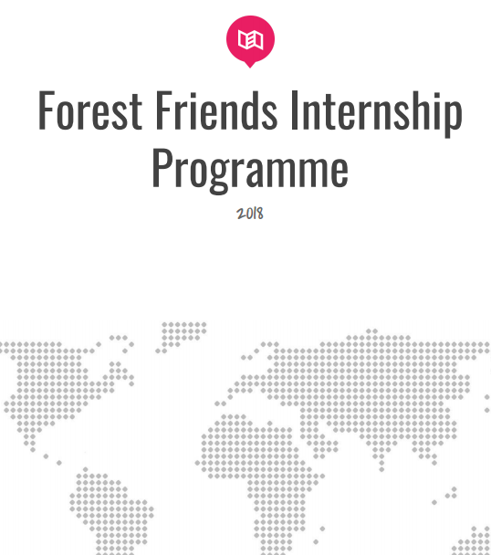 FFI Intership Programme